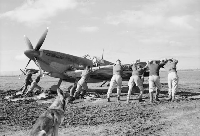 Personnel of No. 92 Squadron RAF push one of their Supermarine Spitfire Mark VIIIs from the mud on the waterlogged landing ground at Canne, Italy