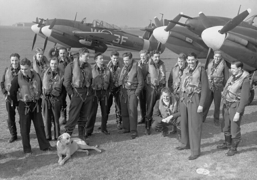 No.137 Squadron mascot dog with Whirlwinds, 1943