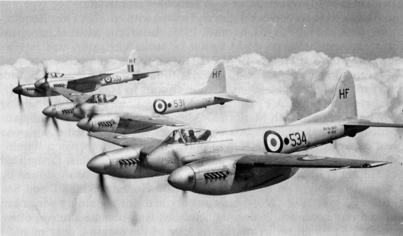 Sea_Hornet_F_Mk_30_-_001