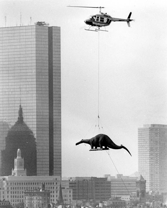 A helicopter moving a dinosaur