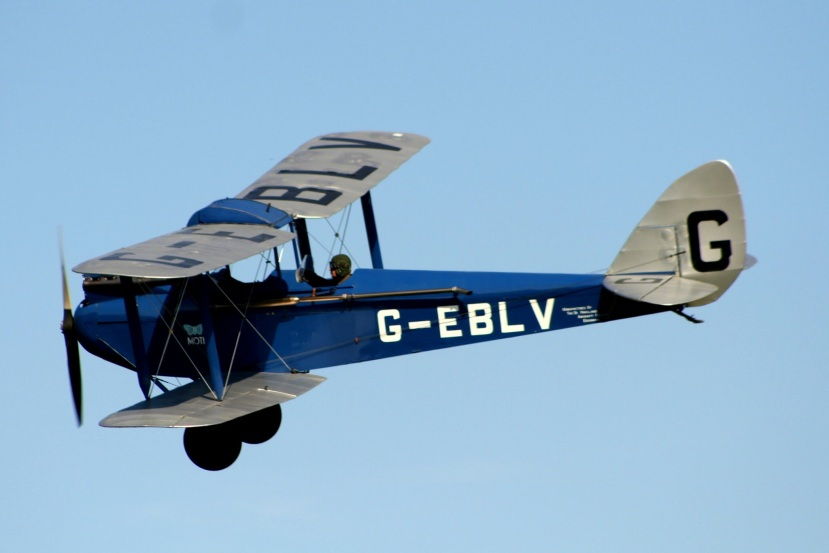 de Havilland DH 60 Moth.jpg