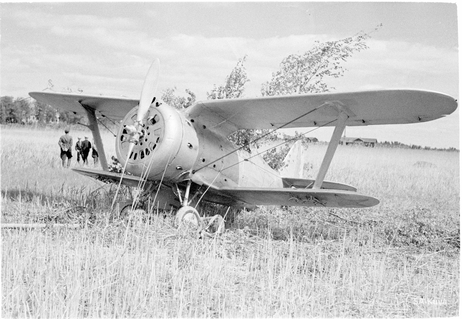 Polikarpov_I-153_SA-kuva_20616.jpg