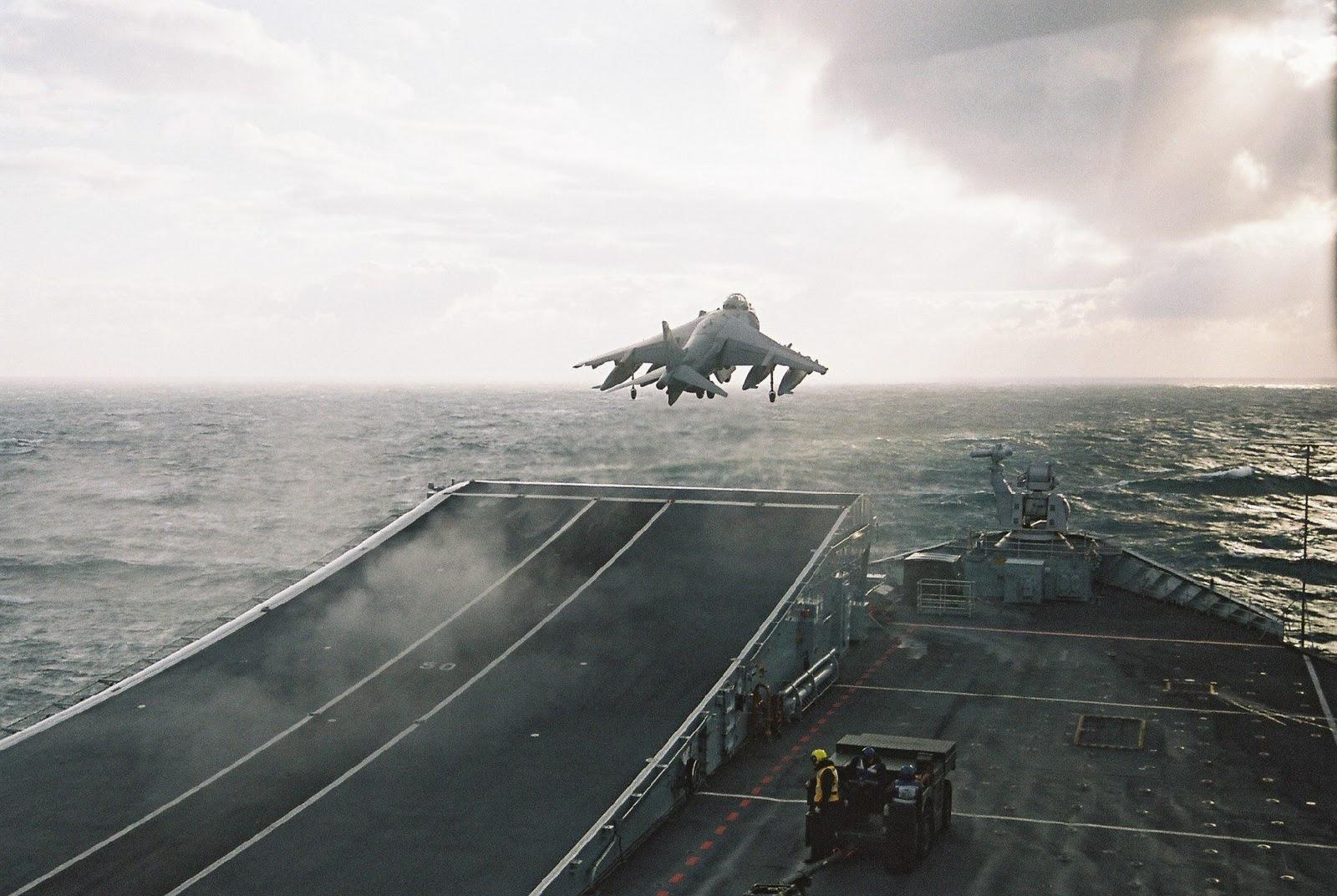 Harrier Weight Record.jpg