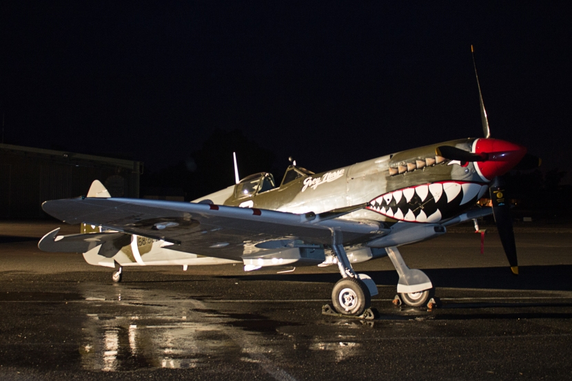 Supermarine spitfire 7 (1).jpg