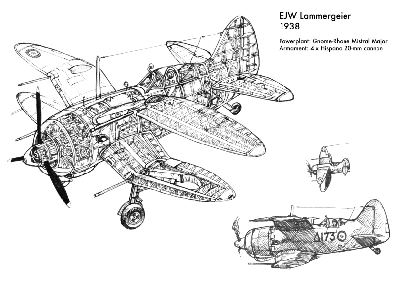 Lammergeier (1) (1).jpg