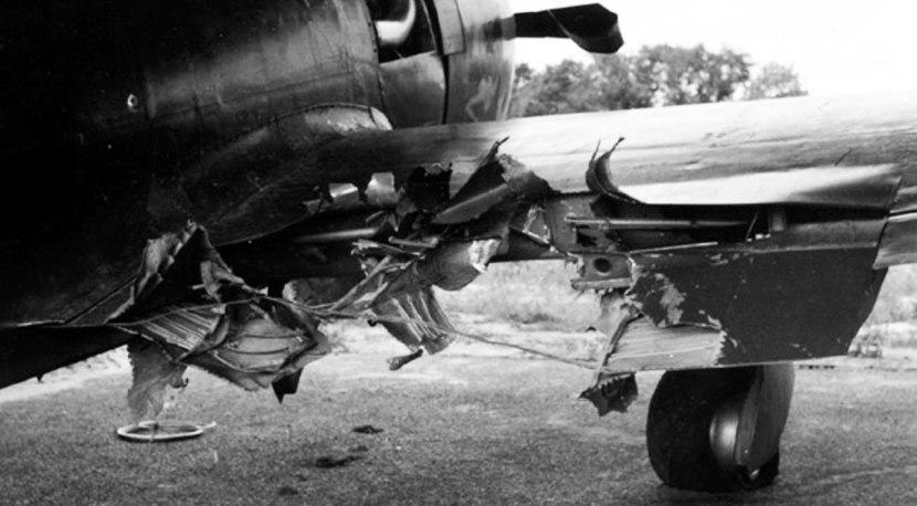 47-wing.jpg