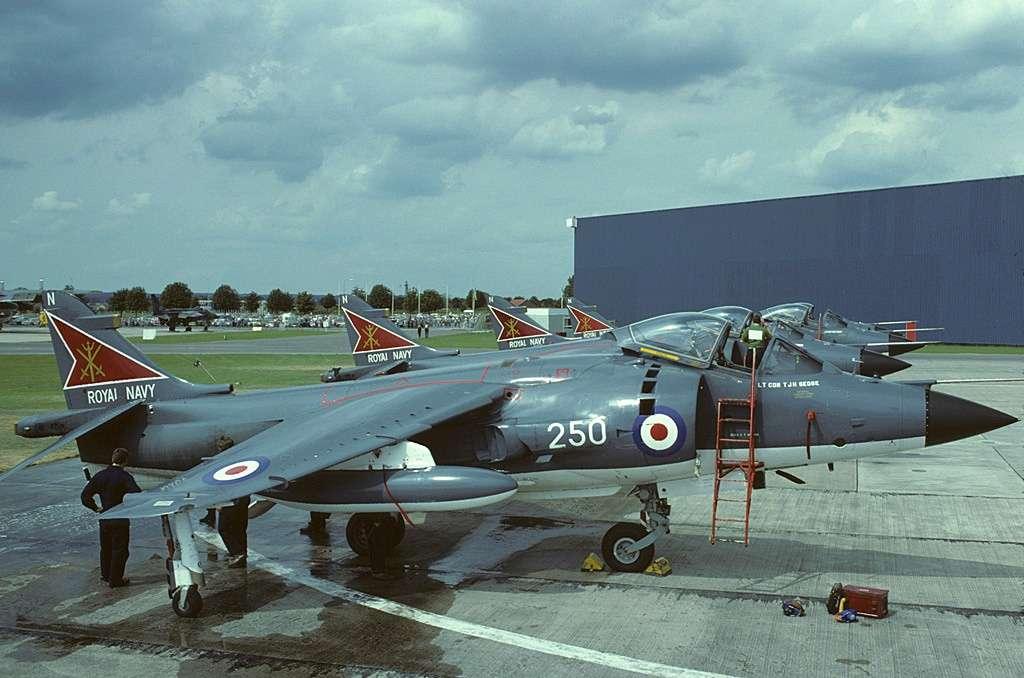 british_aerospace_sea_harrier_frs1_n250_nas800_from_uk_navy.jpg